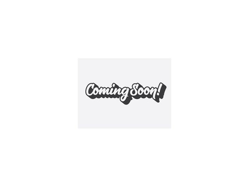 Siberian Husky-Male-Black / White-2351530-Petland Carriage Place